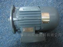 EMOD电机B132M / 4T – L32祥树供应