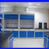 微生物实验室设备  通风柜
