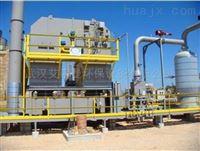化工 蓄热式热力焚烧炉厂家