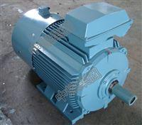 厂家供应煤矿采掘机械专用三相异步电机